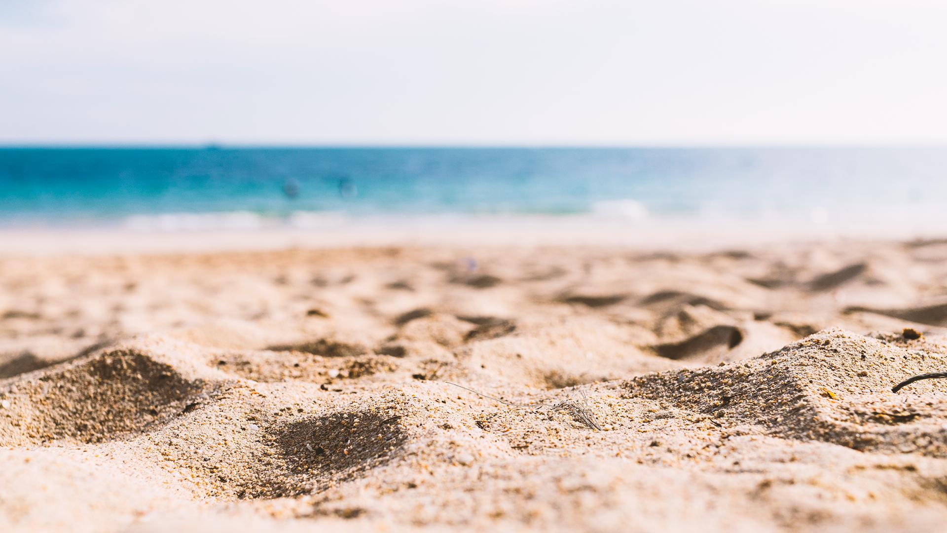 limpieza de las playas